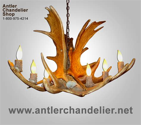 Real Antler Moose Chandelier Rustic Lighting Deer Lamps Antler Chandelier Shop
