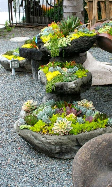 Garten Pflanzen Pflegeleicht by Sukkulenten Pflege Wie Pflegeleicht Sind Sukkulenten