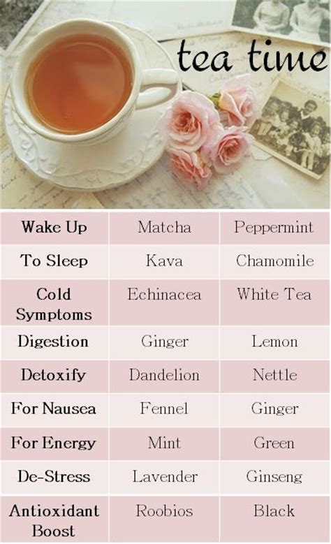The Their Tea by All You Need To About Tea Different Types Of