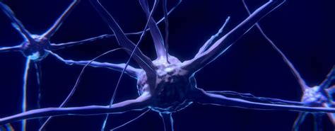 Klinik Obat Aborsi Cepu Cara Menyembuhkan Penyakit Trigeminal Neuralgia