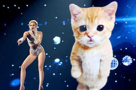 miley cyrus shuts down the amas with her lip synching space kitten miley cyrus and her feline friend swing
