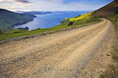 marlborough sounds gravel road photo information