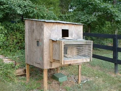 smallest racing pigeon loft search
