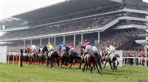 Action at cheltenham racecourse on centenary day photo by scott