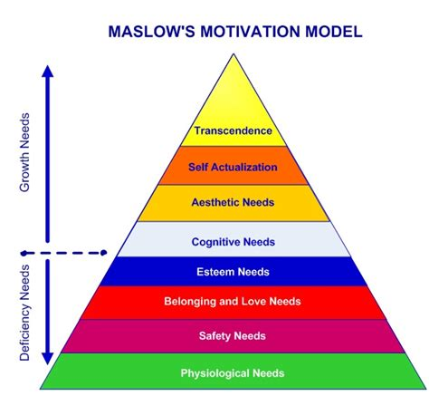 Maslow Hierarchy Of Needs Diagram Download Free Hierarchy Pyramid Template