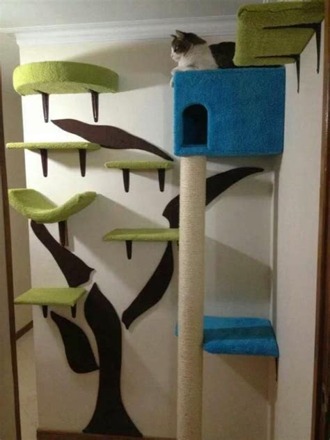 25 best ideas about cat wall shelves on cat
