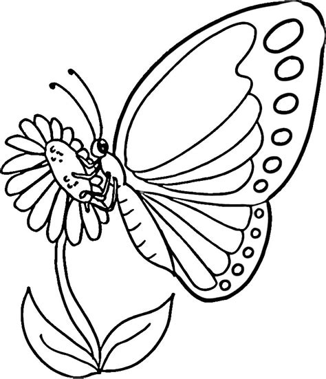 coloring page for monarch butterfly monarch butterfly coloring pages az coloring pages