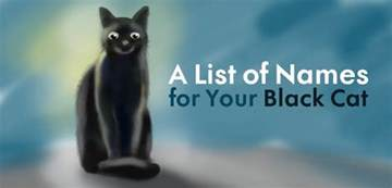 cool unique and creative black cat names for your beloved pet