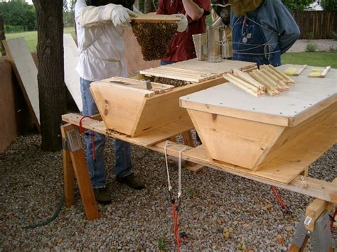 top bar bee hive top bar bee hive secret life of bees pinterest