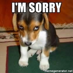 Im Sorry Memes - i m sorry sorry dog meme generator