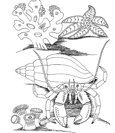 underwater world printable coloring pages free printable ocean life coloring pages az coloring pages