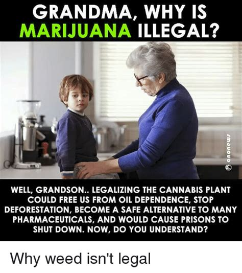 Legalize Weed Meme - grandma why is marijuana illegal well grandson legalizing