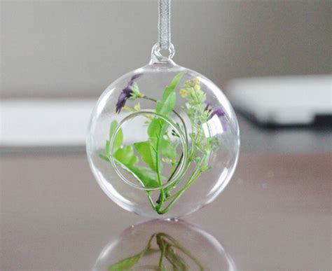 Glass Balls For Vases by Aliexpress Buy 8 Pcs Lot Modern Hanging Clear Flat