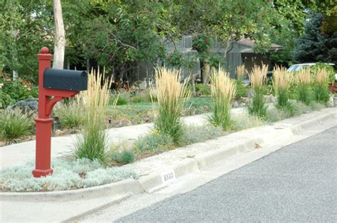 2 Car Garage Design Ideas how to landscape a parking strip without grass install
