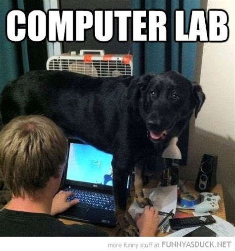 New Computer Meme - best 25 tech humor ideas on pinterest technology humor