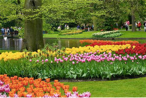 Beautiful Flower Gardens Of The World Rose Pictures Beautiful Flower Gardens Of The World