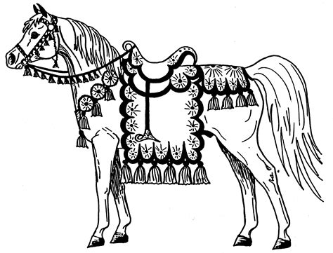 arabian horse colouring pages page 2