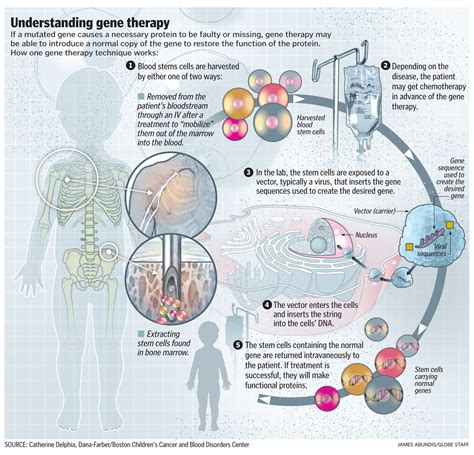 how to a therapy how gene therapy works