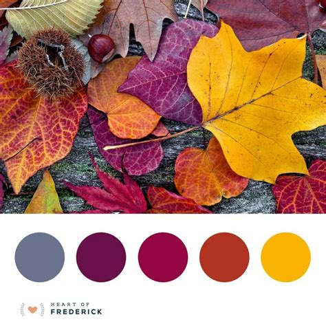 fall color schemes 25 best ideas about fall color palette on pinterest