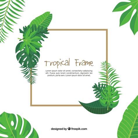 scarica cornice per foto gratis cornice per congedo tropicale scaricare vettori gratis