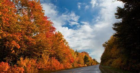 michigan color tour in color tour 28 images newberry mi fall color tour