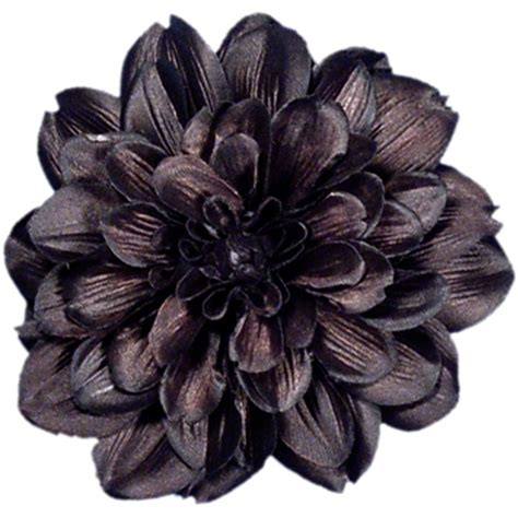 Eblack Flower a jc shopping habit black dahlia