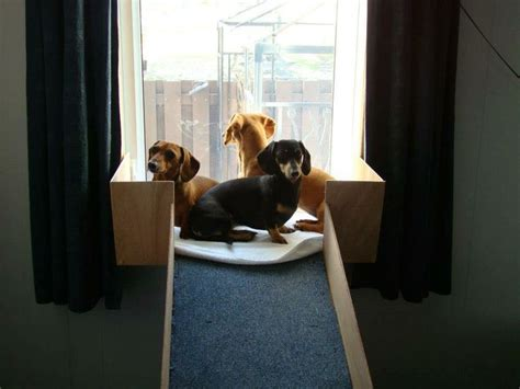 dog window bench dog window seat ideas para las mascotas pinterest