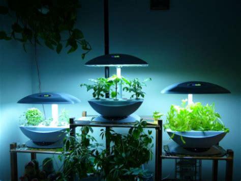 membuat tanaman hidroponik cara menanam tanaman hidroponik sederhana