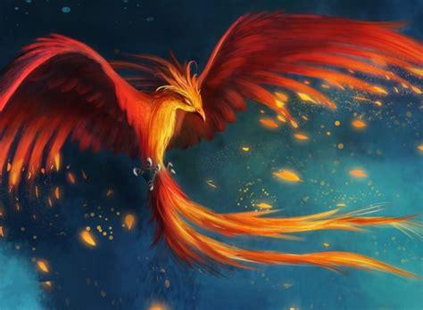 hd  phoenix samsung wallpapers laptop wallpaper