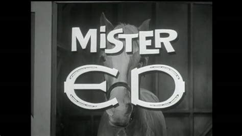 theme song mr ed mr ed theme youtube