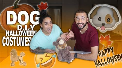 epic film fail halloween 4 dog diy halloween costumes dont watch this epic fail