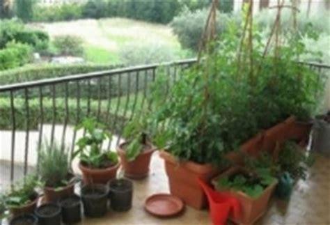 contenitori per orto in terrazzo orto in terrazzo giardino in terrazzo come realizzare