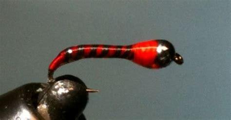 zebra midge pattern recipe flyguys north hot spot chironomid pupa fly fishing pattern