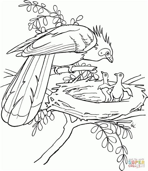 south america coloring page az coloring pages