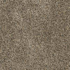 stainmaster carpet colors shop stainmaster trusoft oasis ii fantasia fashion