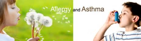 Allergy And Asthma Respiratory And Breathing Aids Allergy Asthma And