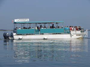 amelia river excursions amelia island guides association - Catamaran Tour Amelia Island