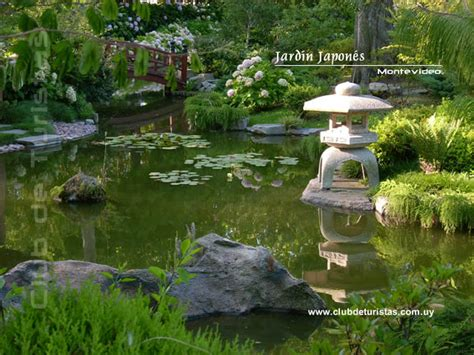 imagenes de jardines soñados jardines japoneses 青空 aoi sora 空青