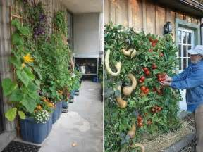 Growing Vertical Gardens Gardening Landscaping Vertical Herb Garden Before