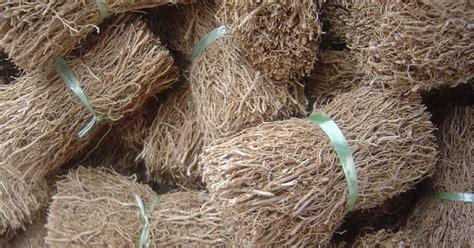 Akar Wangi Essential Vetiver prima fleur botanicals prima fleur essential vetiver