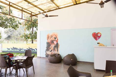 design cafe whitefield gift your best bud a fun day out at therpup a dog cafe