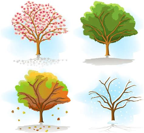 Christmas Plant Decoration Same Tree In Different Seasons Free Vector In Encapsulated