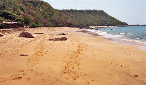 libro butterfly beach cola beach butterfly beach goa strand