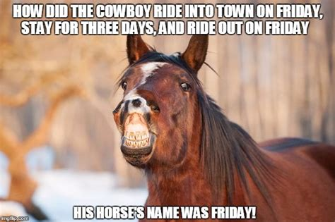 Meme Horse - friday baby memes about horses pictures to pin on
