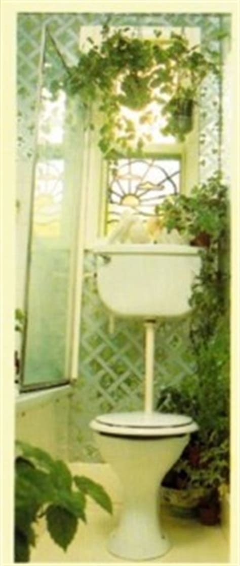 plants for bathroom with no windows best plants to grow in a kitchen