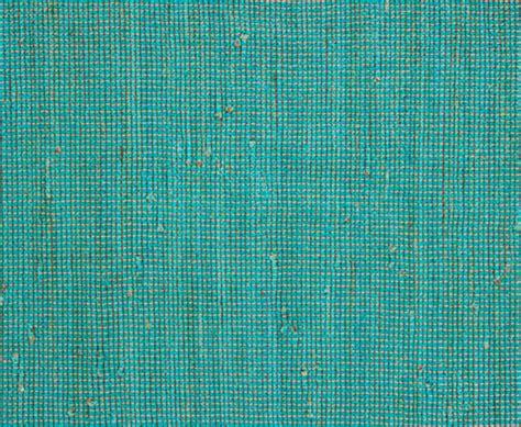 Aqua Colored Rug by Aqua Floor Rug Rugs Ideas