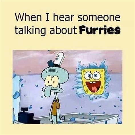 Furry Meme - 114 best images about furry pride on pinterest wolves