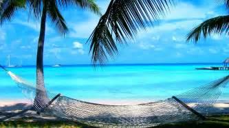 Wooden Bar Chairs Hammock Tag Wallpapers Hawaii Kauai Violet Islands Palm