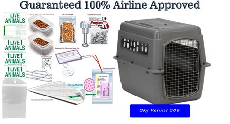airline approved crate sky kennel 300 pet travel carrier package kats n us
