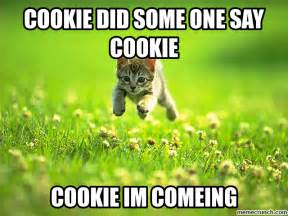 Cookie Meme - cookie cat